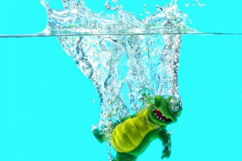 krokodillenbal
